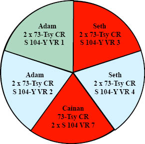 http://timeemits.com/HoH_Articles/Primary_70-Sacred-Year_Age_of_Cainan_files/Adam_73Tsy_Seth_2G2BRL.jpg